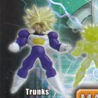 Trunks - Maxi coll. Father/Son Kamehameha