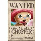 Poster plastifié Wanted Chopper (52X35)