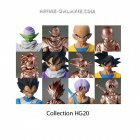 image collection complete DBZ HG 20 Partie A!